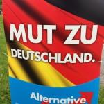Debattiersalon: AfD-Kampagne, Stimmungsmache gegen Europa, Rechtspopulisten, Björn Raupach © 2014